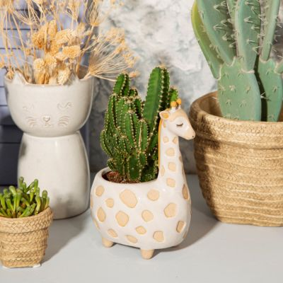 Pot de fleurs Gina la Girafe