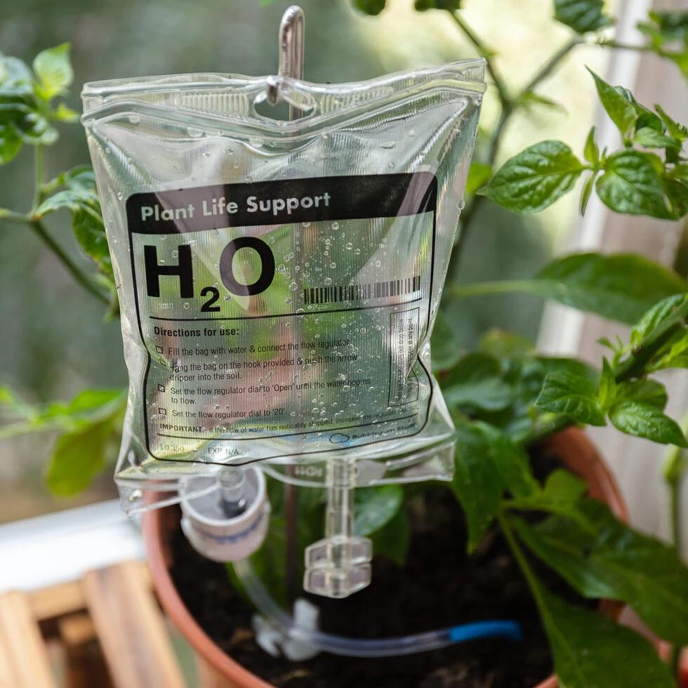 Distributeur d'eau Plant Life Support