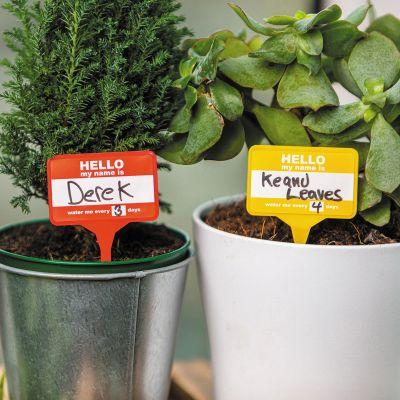 Set de 12 Badges pour Plantes