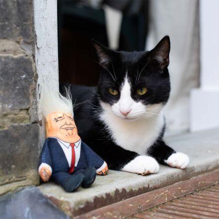 Peluche pour Chats Président