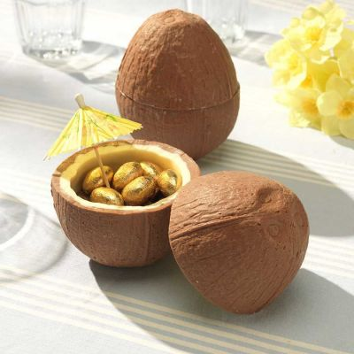 Cadeau Enfant - Noix de coco en Chocolat (avec ses petits œufs en chocolat)