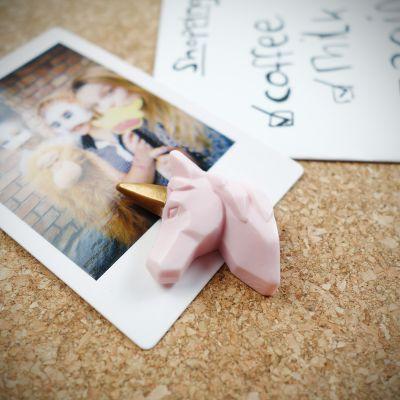 Cadeau romantique - Punaises Licornes