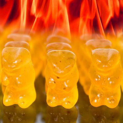 Bonbons - Des oursons diablement piquants !