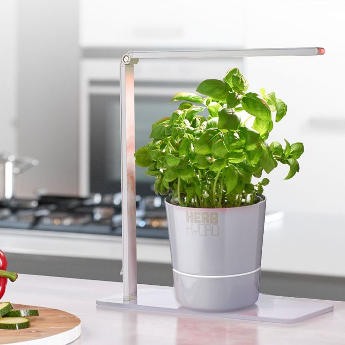 Lampe Herb Booster