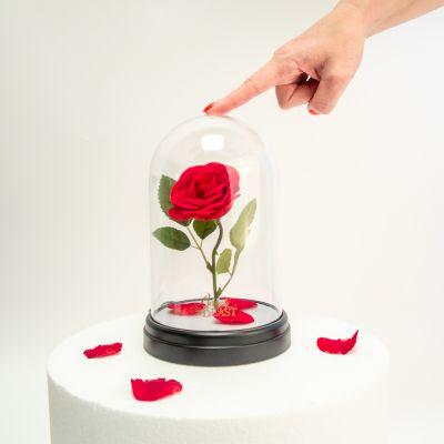 Disney - Lampe Rose Enchantée - La Belle et la Bête