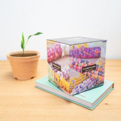 Faites-le vous-même - Box à planter de maïs arc-en-ciel