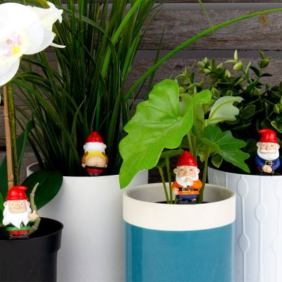 Ensemble de 4 Mini Nains de Jardin
