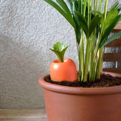 Gadgets pour la maison - Arroseur Care It pour pots de fleurs
