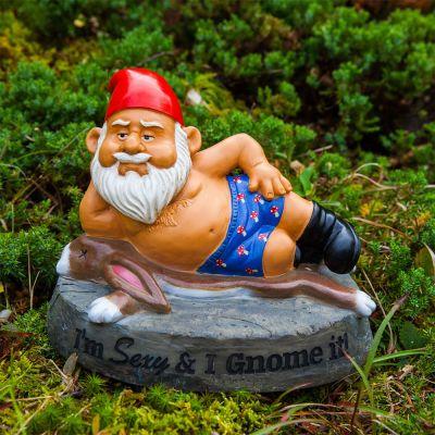 Nain de jardin Sexy