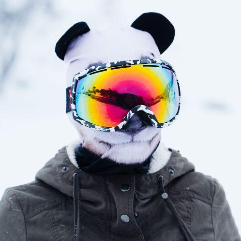 Idée cadeau - Cagoule de Ski Beardo Animaux